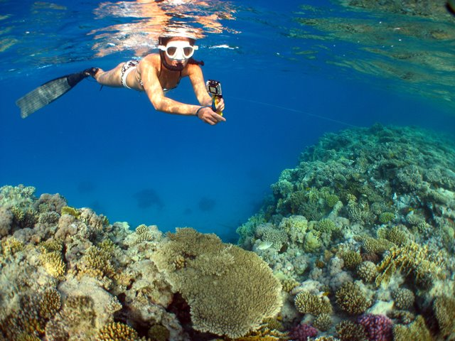 Freediving on coral reef in Red Sea, Egypt with bikini and Go Pro