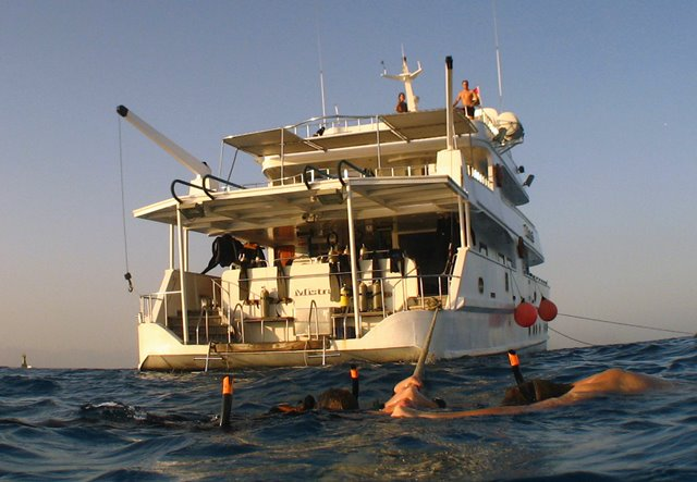 Freediving liveaboard holiday onboard 'Mistral' in Red Sea, Egypt