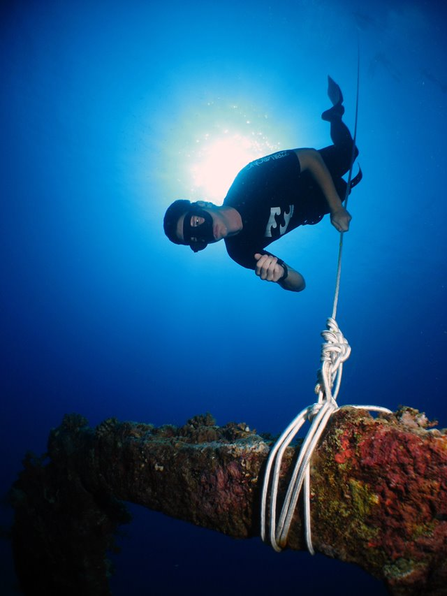 Freediver on line on Dunraven wreck, Red Sea, Egypt