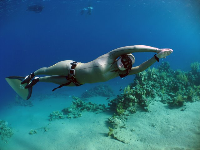 RAID Advanced Freediver, Emma Farrell freediving with monofin on coral reef, Red Sea, Egypt